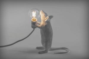 muislamp