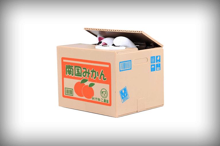 spaarpot kat in doos