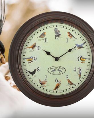 vogel klok met vogelgeluiden