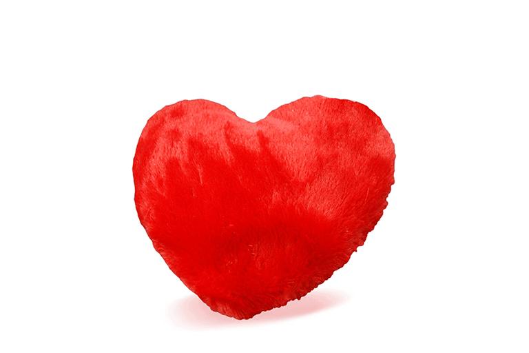 hart magnetron kussen