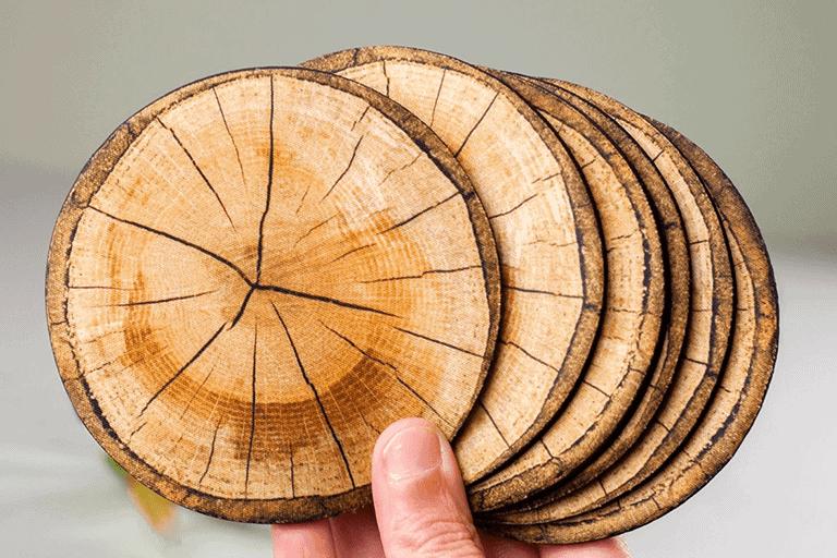 boomschijf onderzetters
