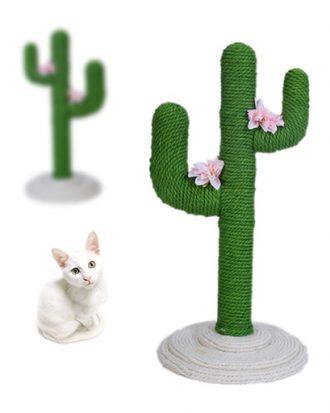 cactus krabpaal